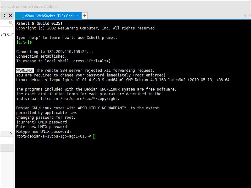 Install V2Ray + WebSocket + TLS + Caddy + CDN Using 233boy